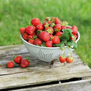Panier de fraises 1food1me
